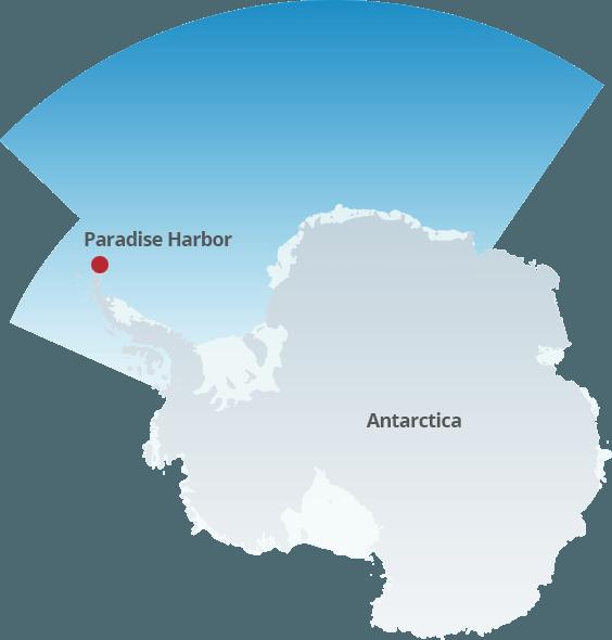 Antarctic red krill oil