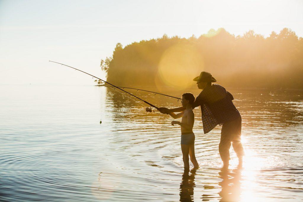 Fish, norway Omega, Fish oil, nature, lake, sea
